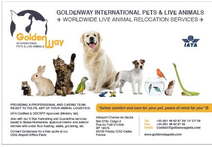 Goldenway international